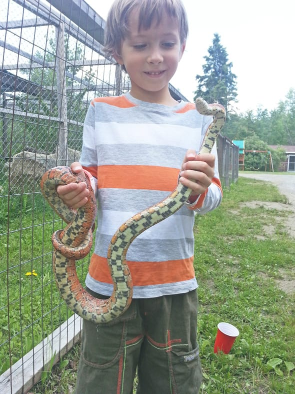 Theo wild about snakes