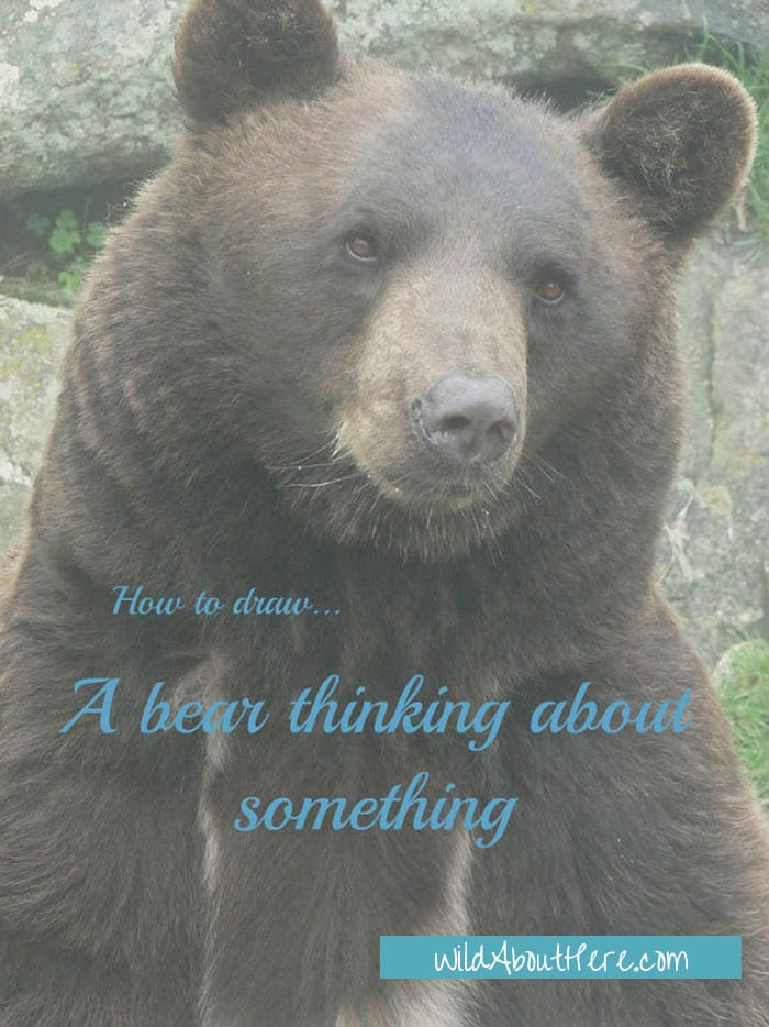 How to draw a bear thinking