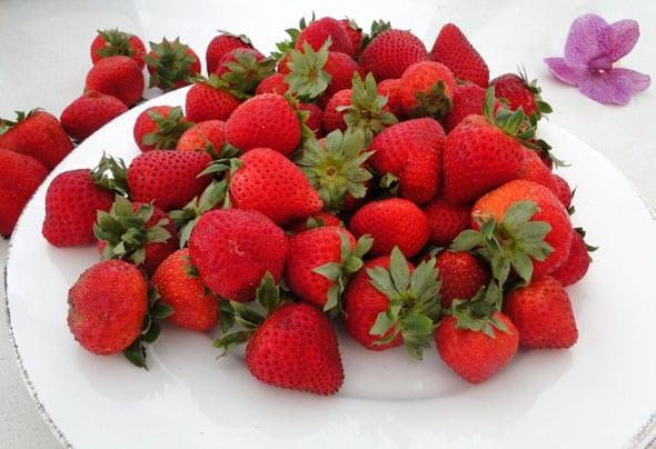 strawberries on plate for tart