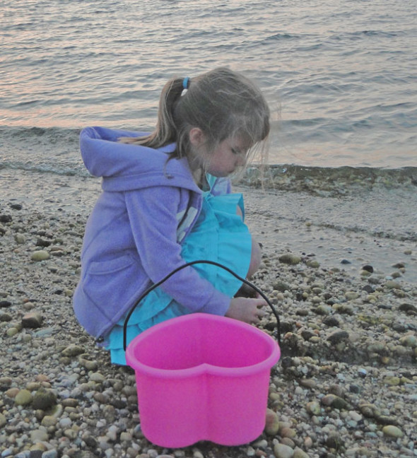 collecting shells and rocks