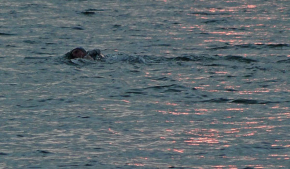 Swimmer in winter beach at sunset