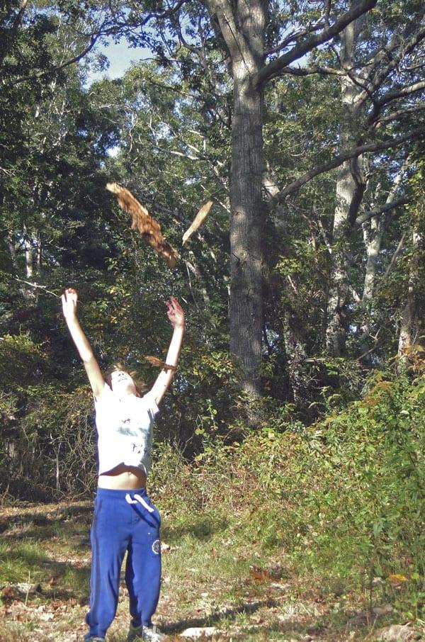 throwing old wood log