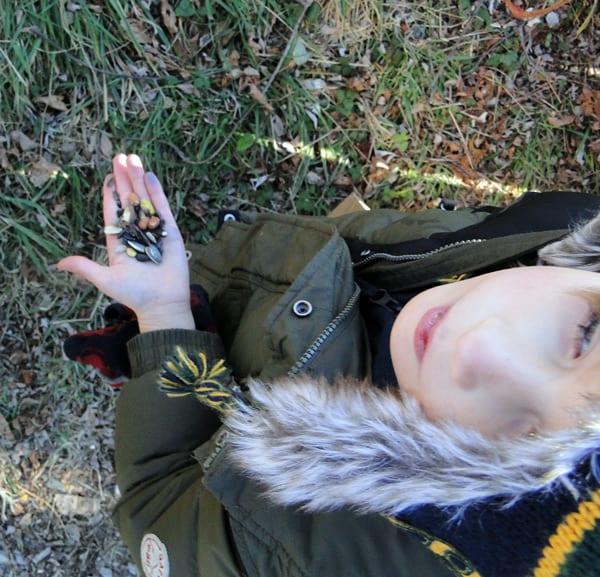 wild bird treats hand