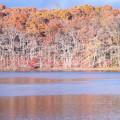 pond autumn shades