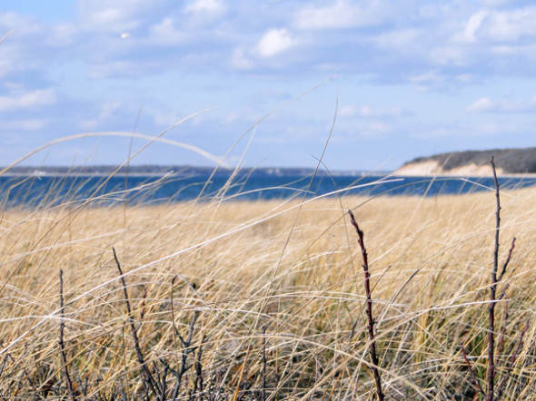 view Jessups Neck Peninsula