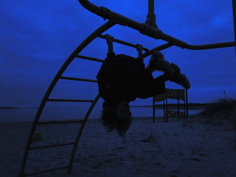 Upside down monkey bars night