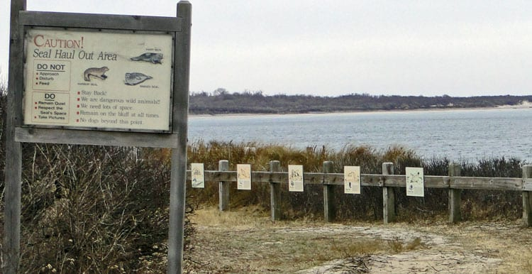 seal haul out area sign montauk