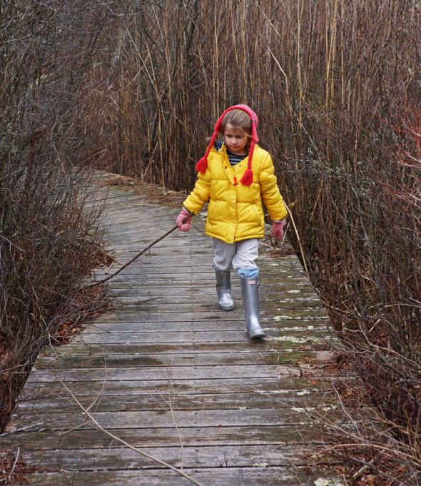 swamp walk with stick