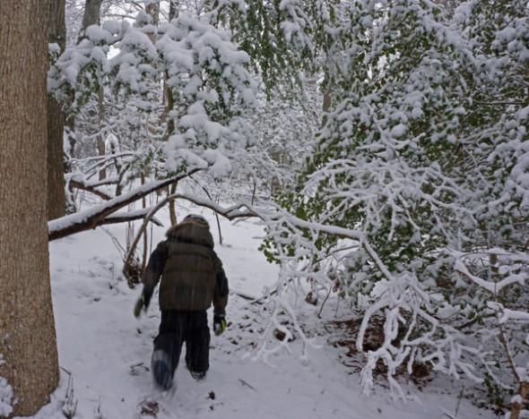 walking snow filled woods