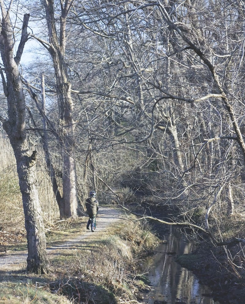 trail path north fithian lane