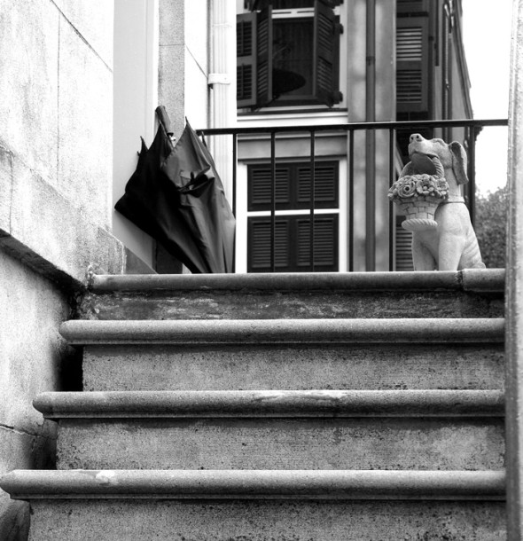 Umbrella and statue black and white photography Savannah