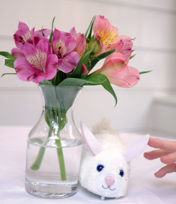 bunny flowers childs hand