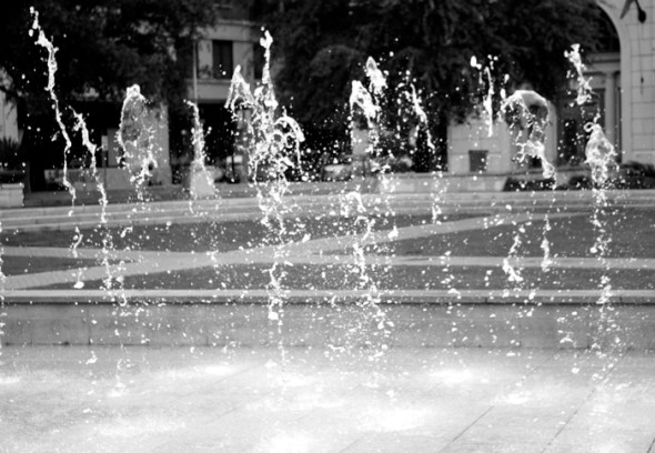 Fountain spray, Savannah