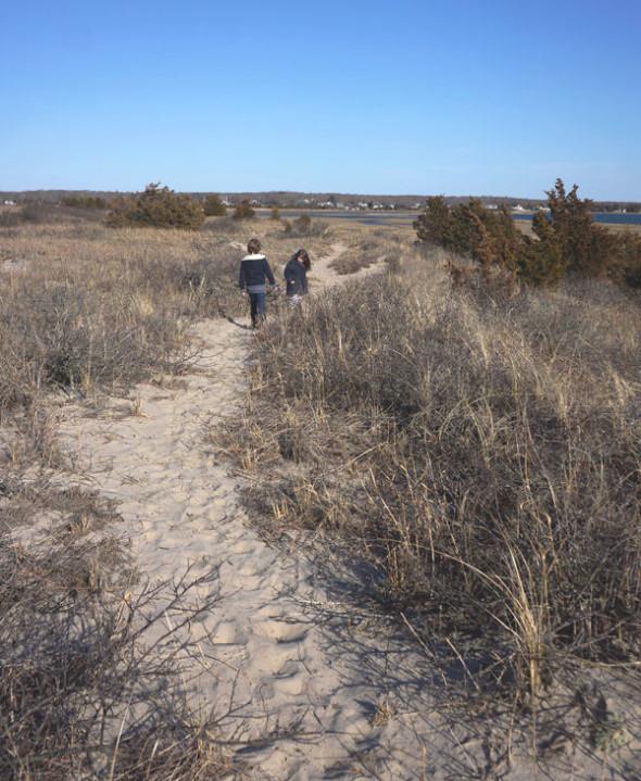 footpath sammys beach preserve