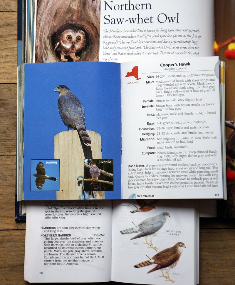 Hawks and owl n guide books