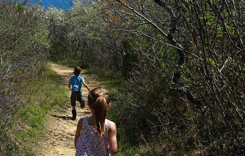 Shadmoor Montauk trails