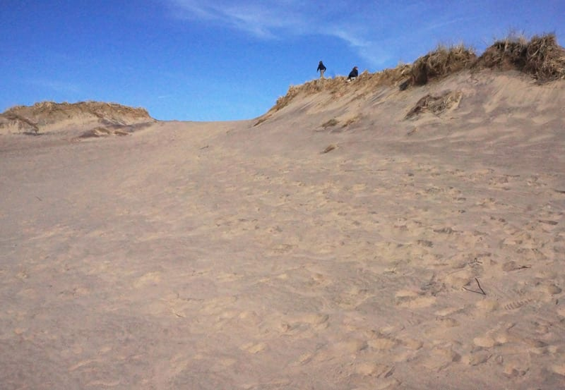 In distance of top of a Walking Dune