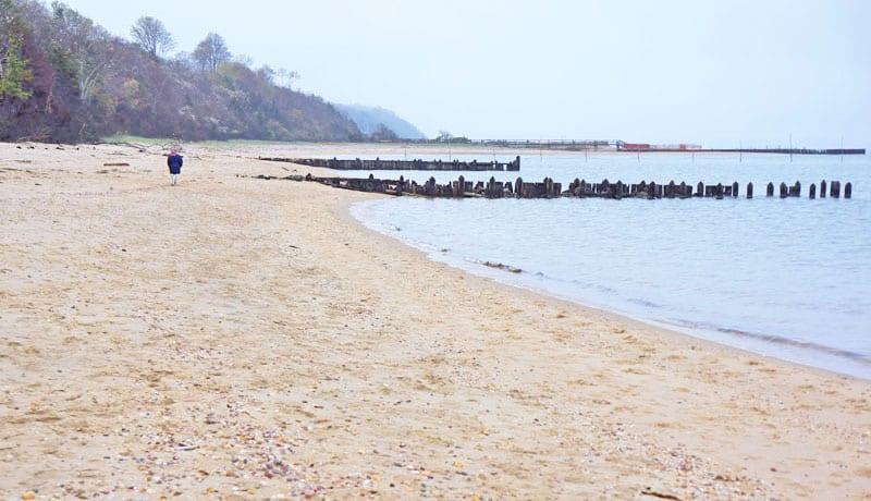 wide shot Alberts Landing piers