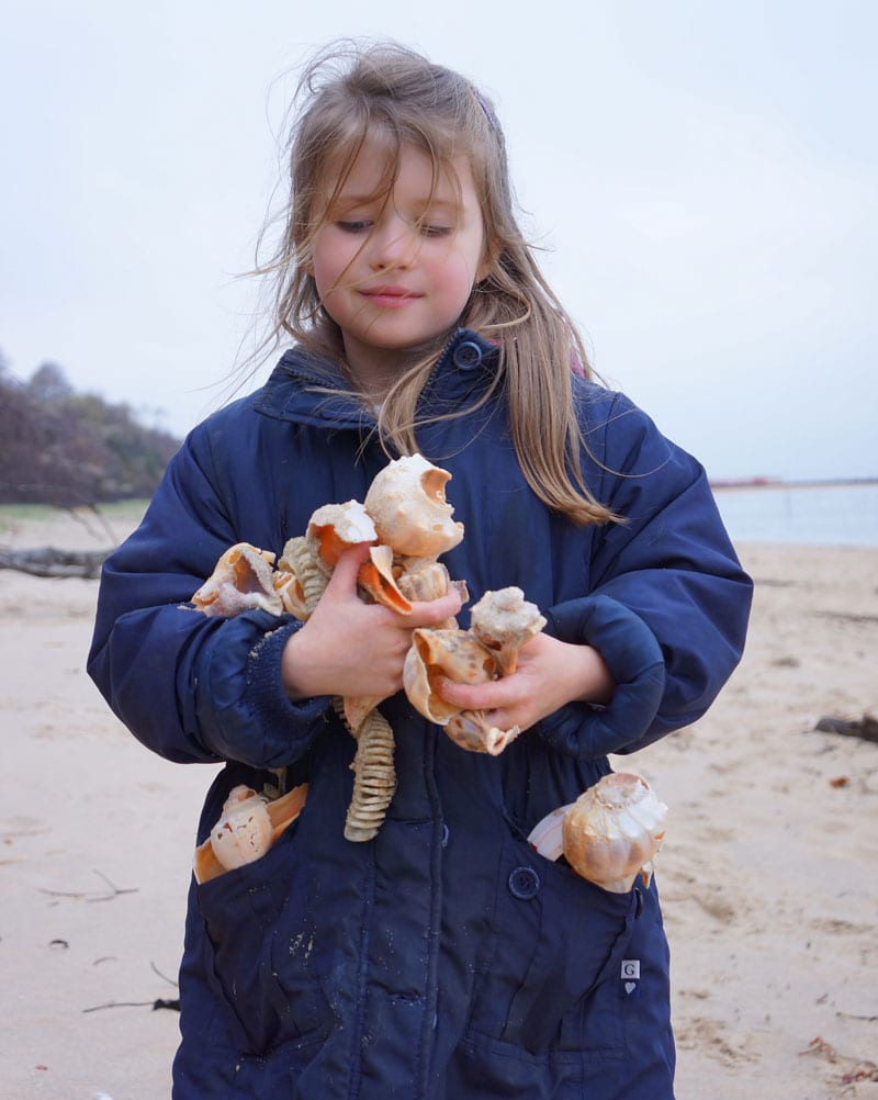 luce carrying shells