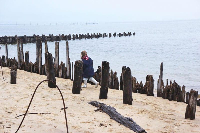 Running among wood posts Alberts Landing Amagansett