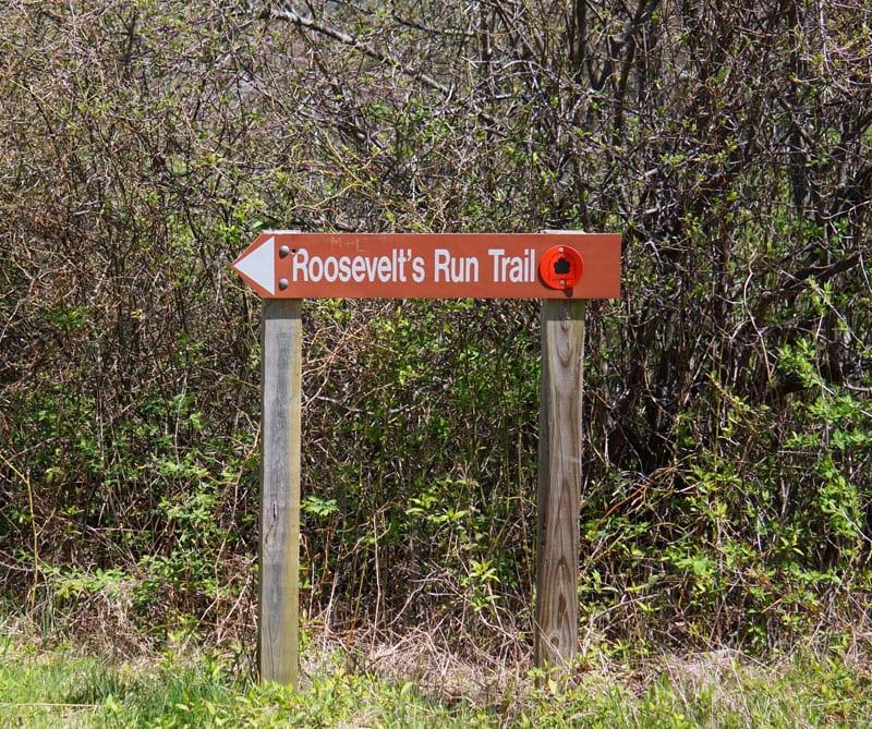 Roosevelt's Run Trail Shadmoor State Park