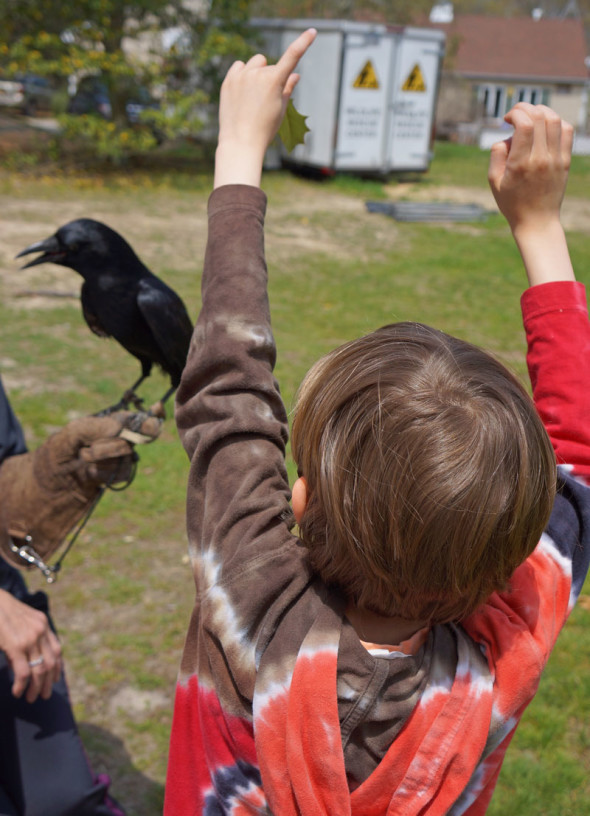 Theo making gestures with smart crow