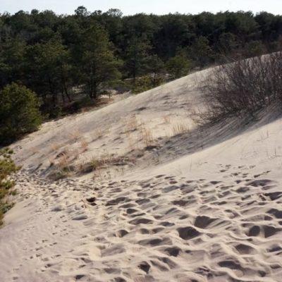 The Walking Dunes