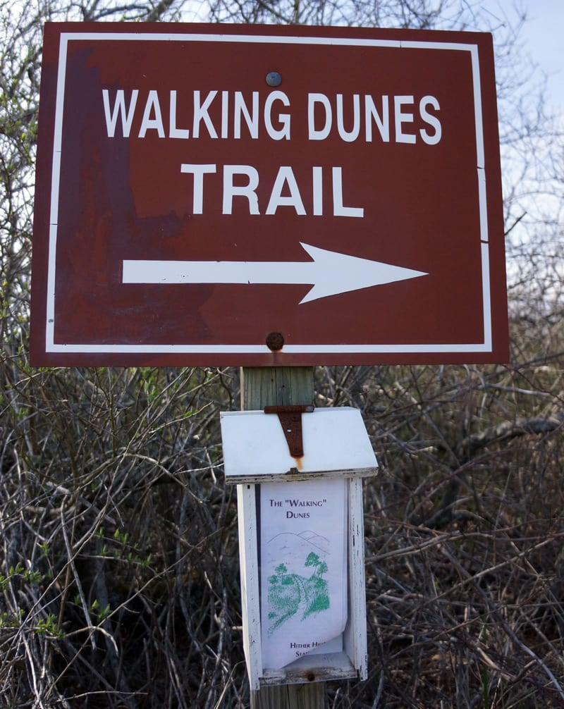 The Walking Dune Sign and Pamphlets