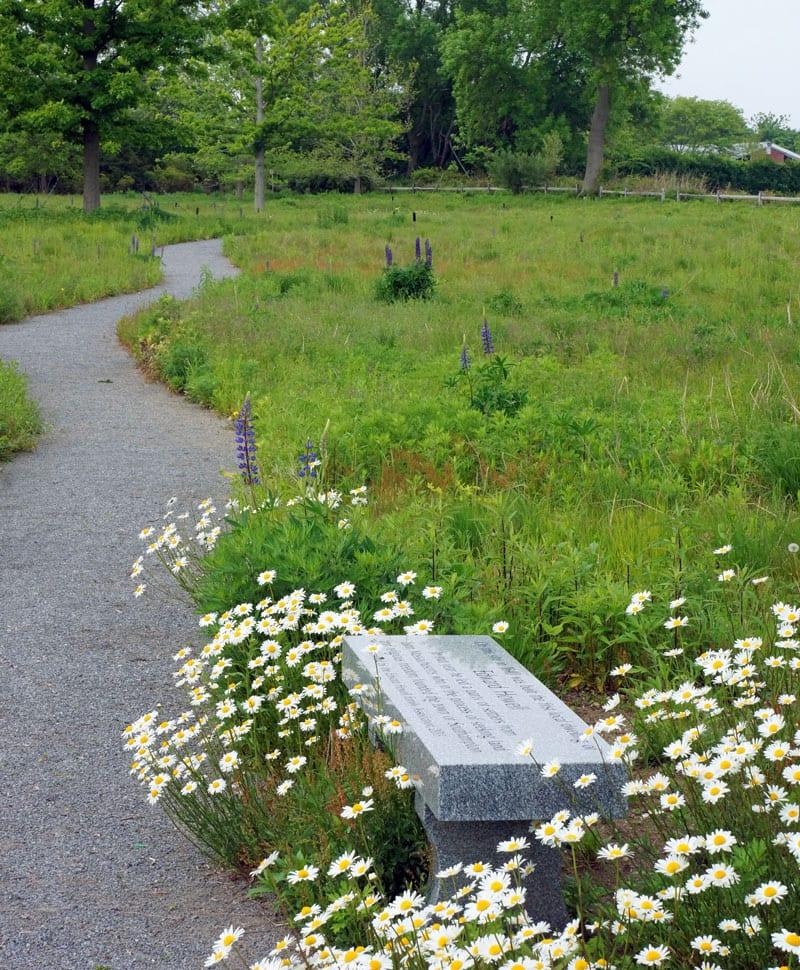 Edward Howell memorial bench