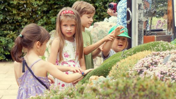 Landscaped Alpine garden and kids