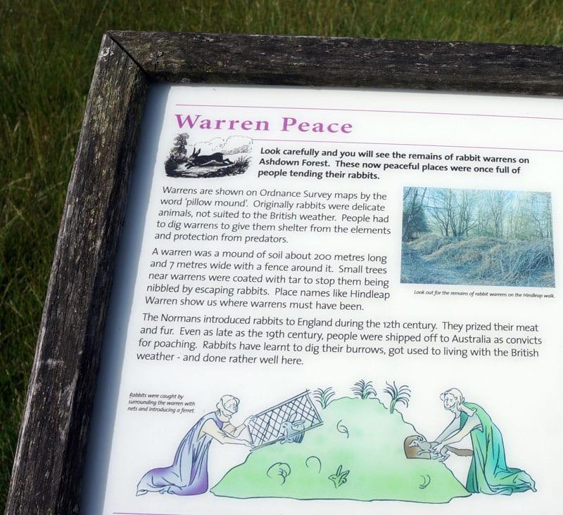 Warren Peace Hindleap Walk Ashdown Forest sign