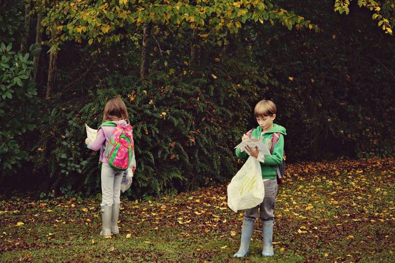 leaf hunt guide