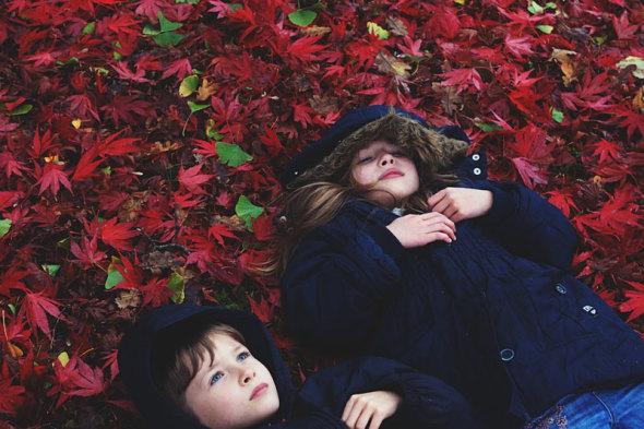 Luce Theo lying japanese maple leaves