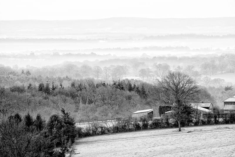 frost mist landscape sussex