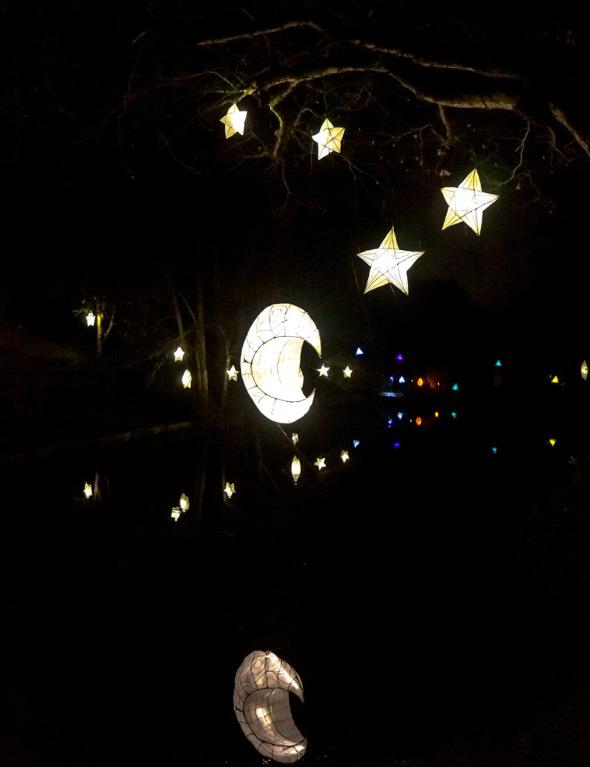 moon stars Glow Wild festival Wakehurst
