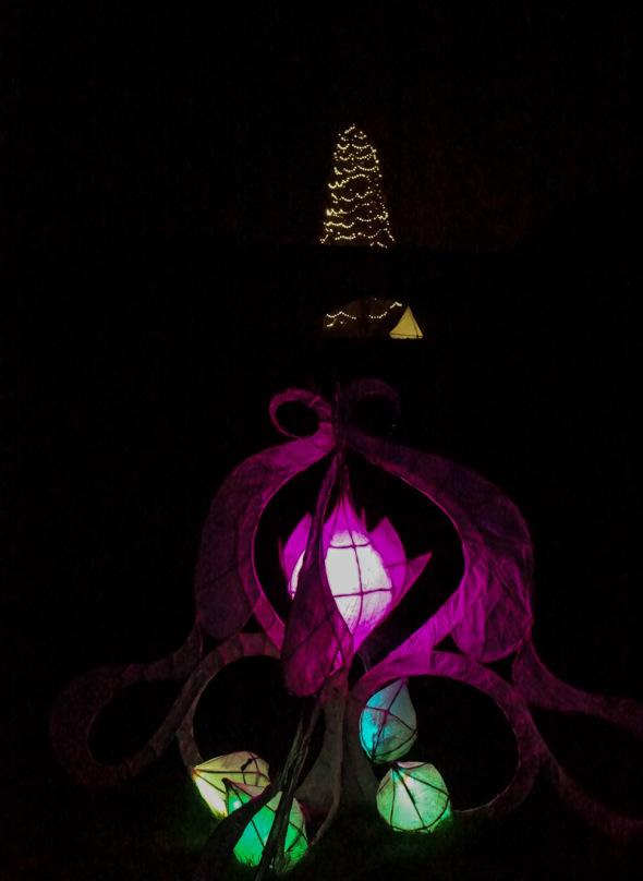 Lanterns and Christmas tree Wakehurst