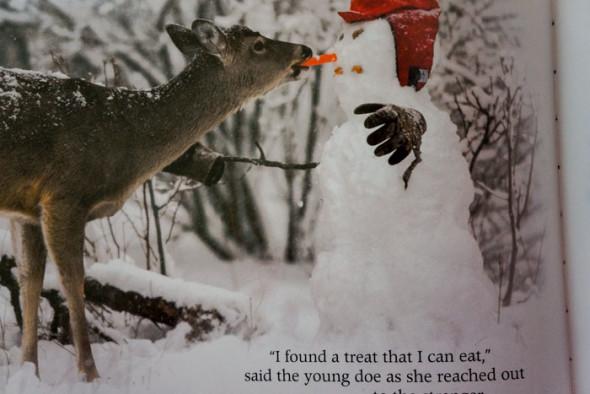 Stranger in the Woods deer eating carrot nose