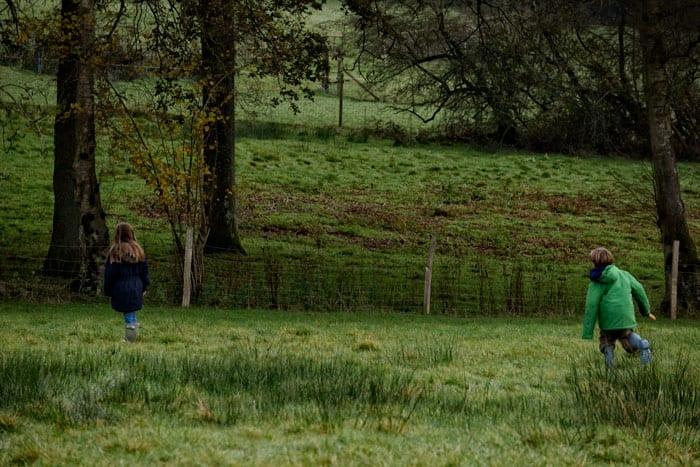 searching in field