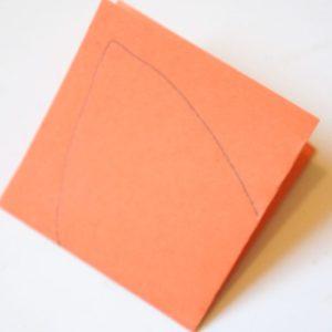 Petal outline