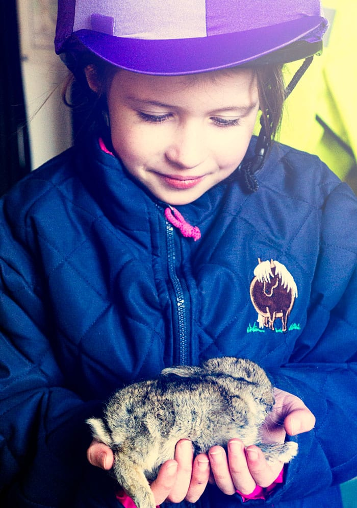 Luce with rescued bunny