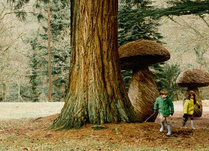 Mushroom sculptures next to Giant Sequoia