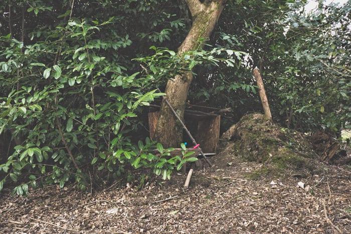 Den hidden in trees