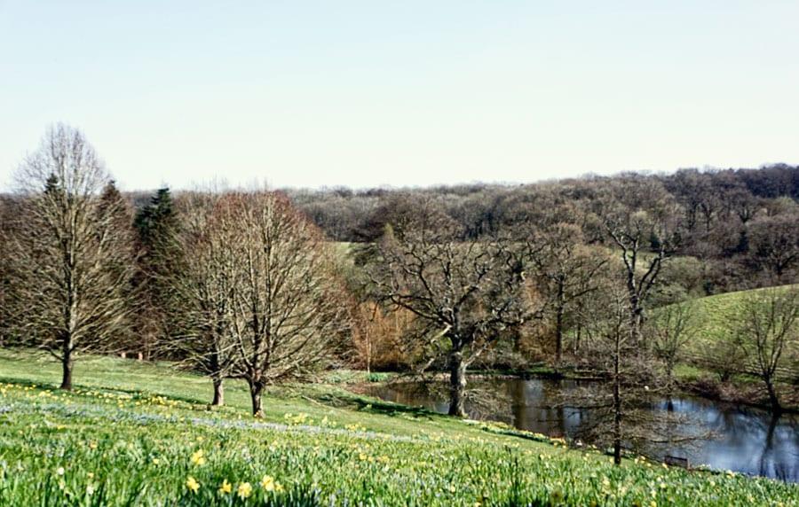 Gravetye-Manor-lake-and-wild-meadow