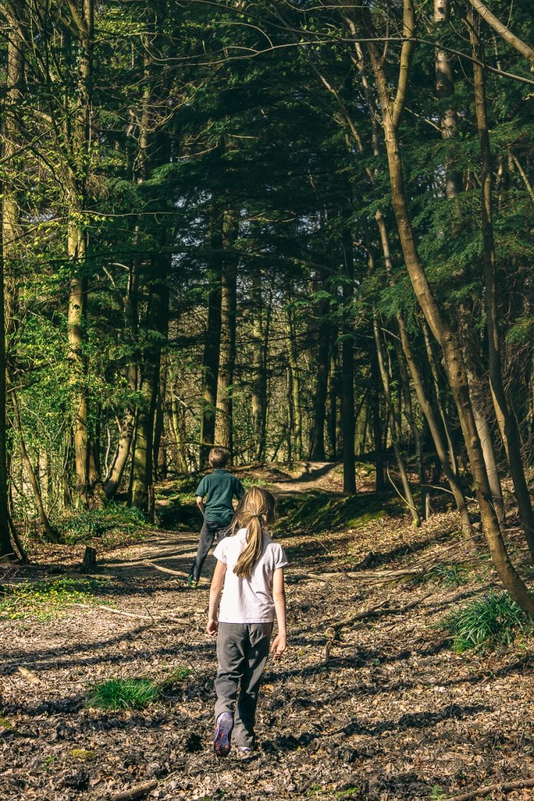 Nature benefits children in woodlands