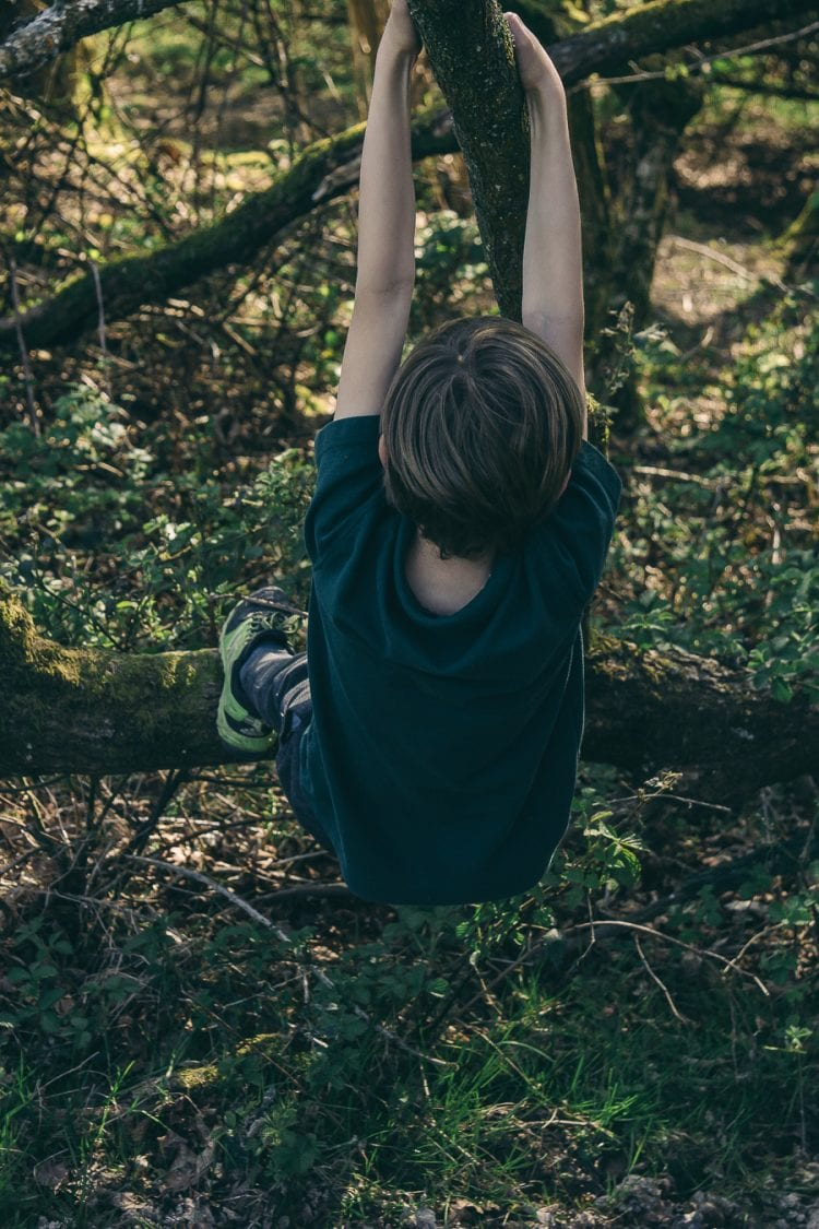 Nature benefits children tree climbing