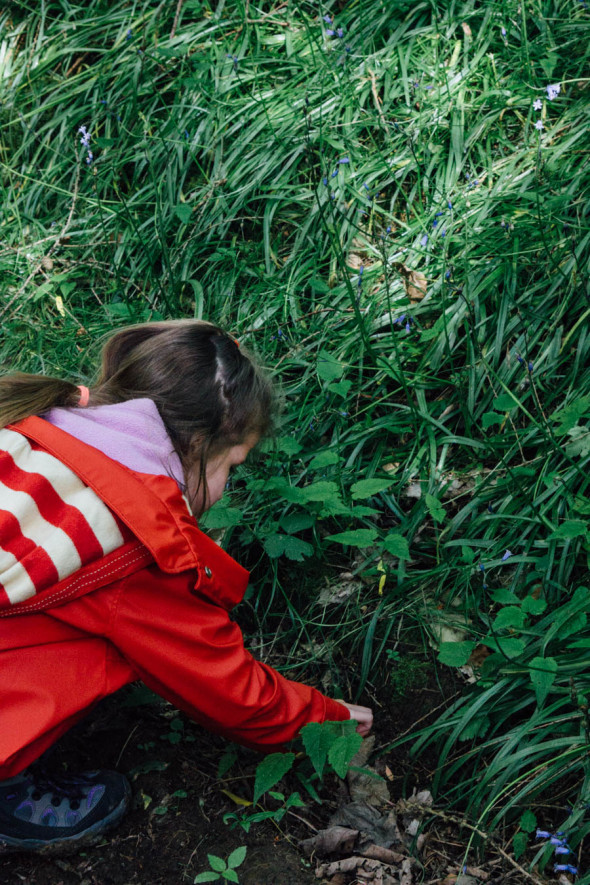 Finding nature treasure