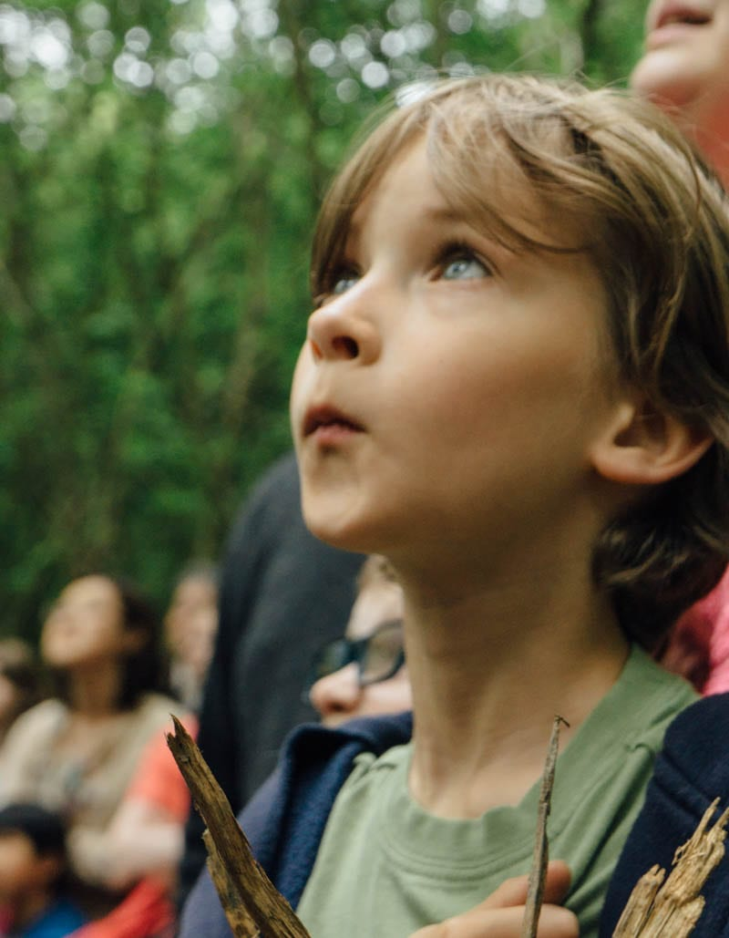 Theo watching Whispering Woods