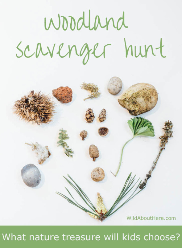 Woodland scavenger hunt
