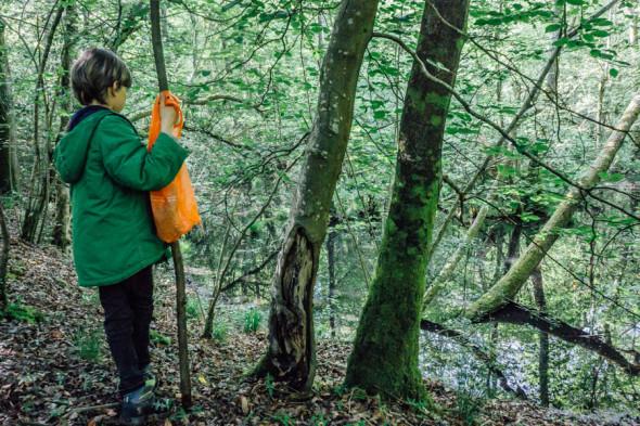 Woodlands scavenger hunt pond