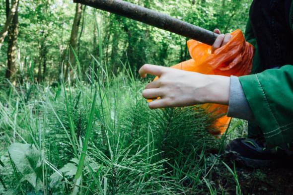 Woodlands scavenger hunt wood floor